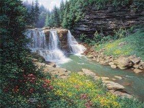 Larry Dyke - Waterfall