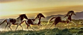 Nancy Glazier - Early Morning Run