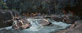 John Buxton - Wilderness Inroads
