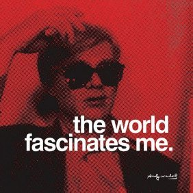 In The Manner Of Andy Warhol. The World Fascinates Me