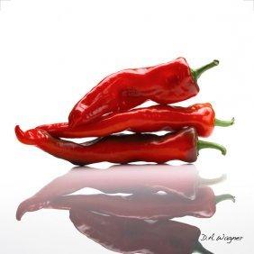 David Wagner - Sugar Hot Peppers