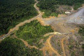 Gerry Ellis - Logging Erosion In Lowland Tropical