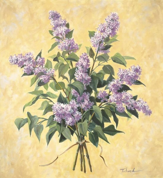 Todd Telander.  Lilac Season I