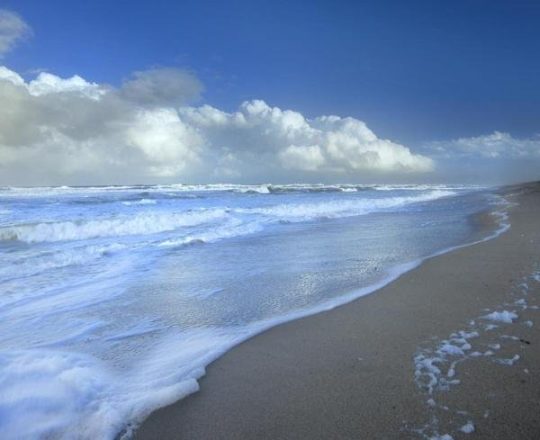 Tim Fitzharris - Storm Cloud Over Beach, Canaveral