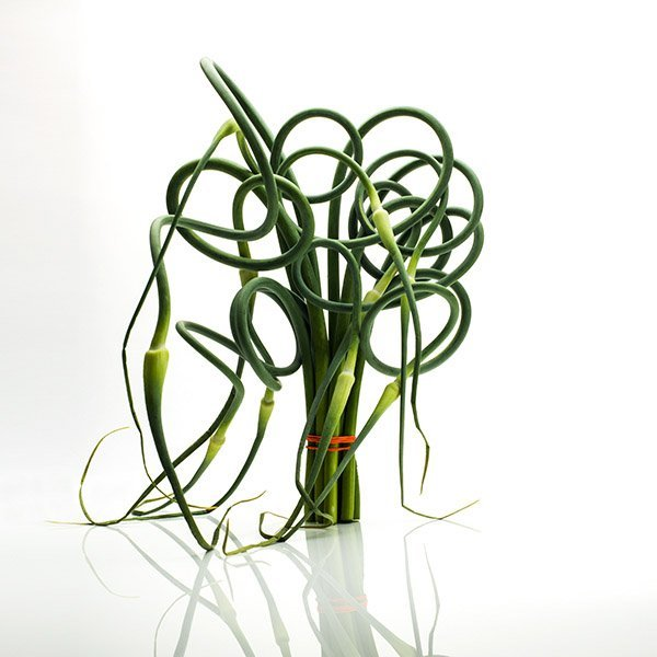 David Wagner - Garlic Scape