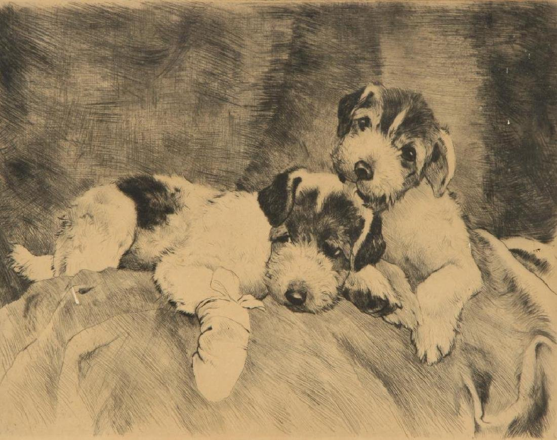 (Early 20th c) WELCH ETCHING OF TERRIERS - 3