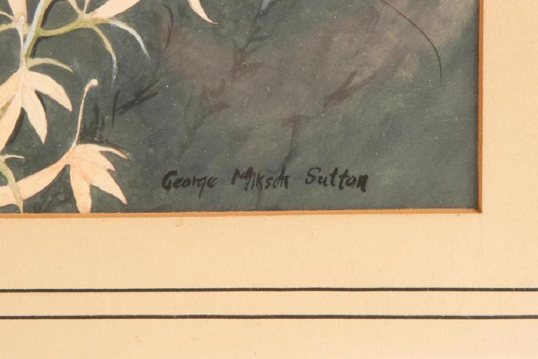 GEORGE MIKSCH SUTTON (1898-1982) - 2