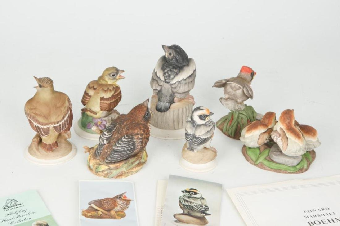 (7) BOEHM HAND PAINTED PORCELAIN BIRDS - 5