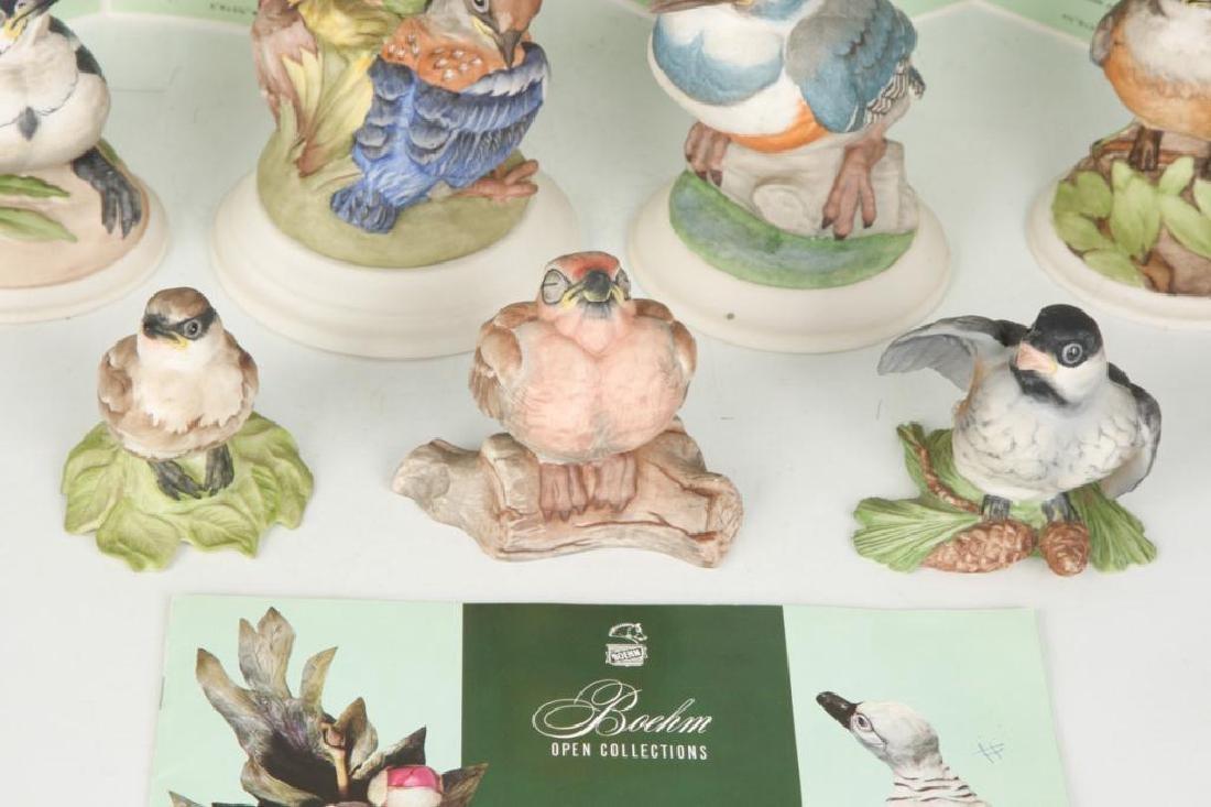 (9) BOEHM HARD PORCELAIN HANDPAINTED BIRDS - 6