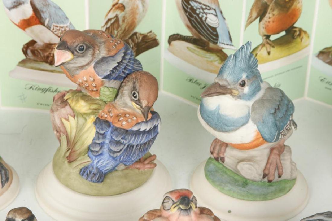(9) BOEHM HARD PORCELAIN HANDPAINTED BIRDS - 7
