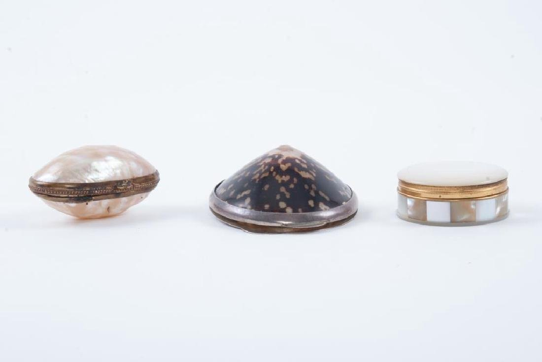 (1) COWRIE SHELL and (2) ABALONE TRINKET BOXES - 4