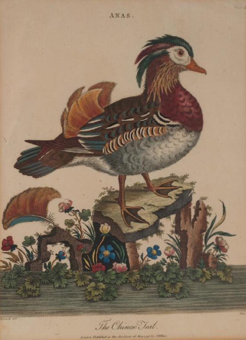 PAIR OF (18th c) J. WILKES COPPER ENGRAVED PRINTS - 4