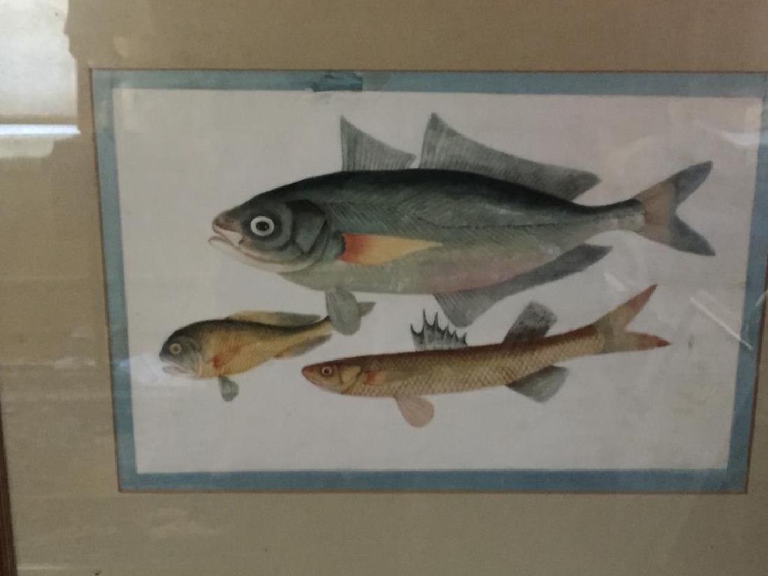 ASIAN FISH PAINTING - 2