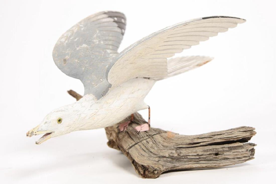 CARVED AND PAINTED HERRING GULL - 5