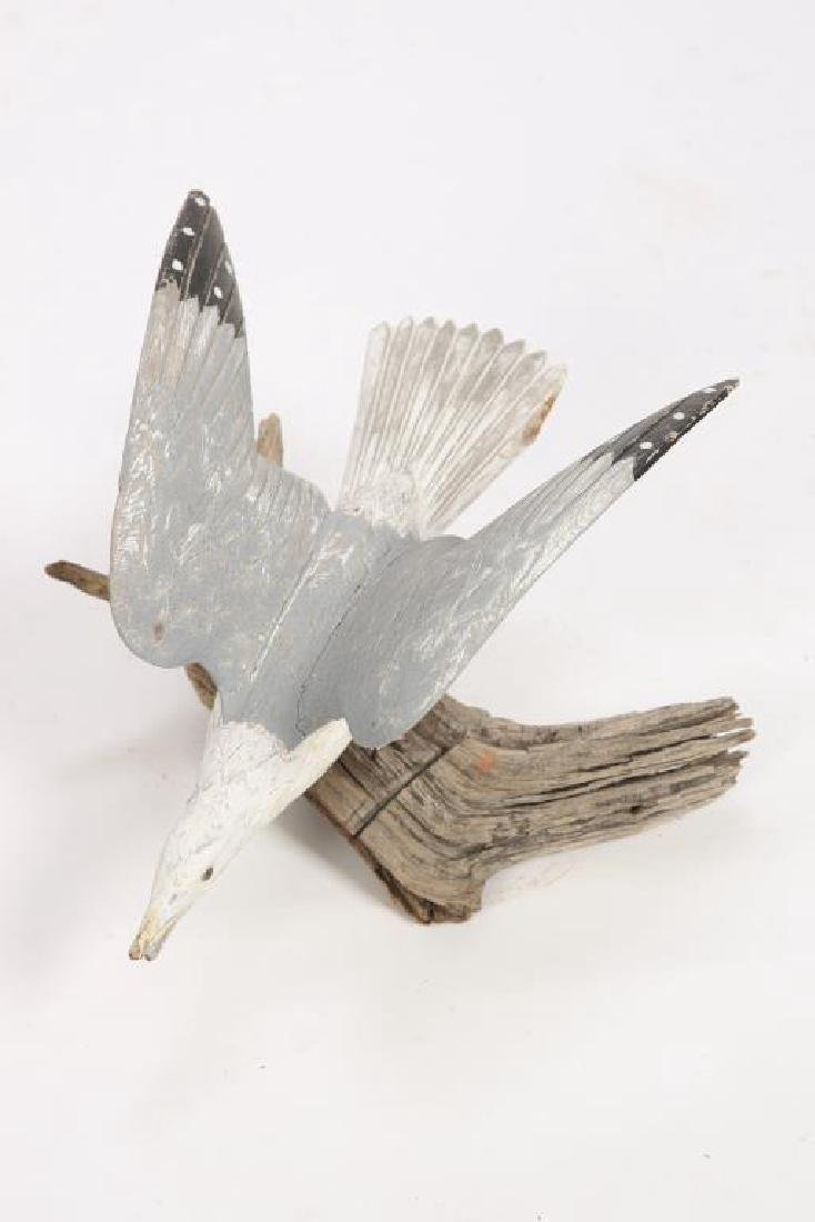 CARVED AND PAINTED HERRING GULL - 6