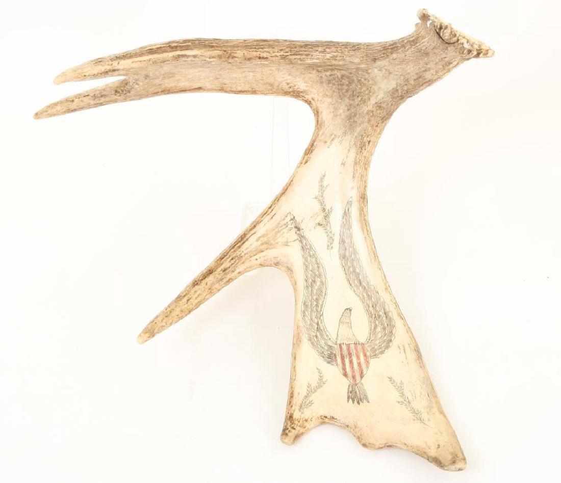 MOOSE TROPHY with SCRIMSHAW AMERICAN EAGLE
