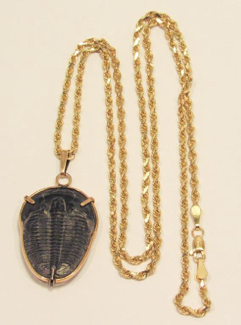 14K GOLD FOSSIL PENDANT ON CHAIN