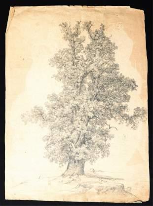 "(Late 19th c) AMERICAN SCHOOL ""The Great Oak"""