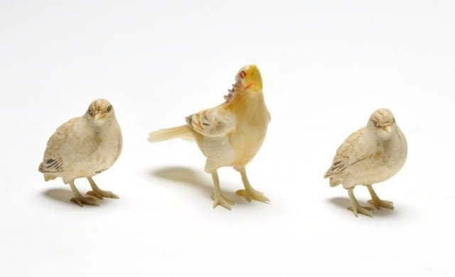 117: Three Japanese ivory carvings of birds