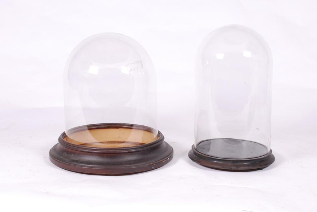 (2) GLASS DISPLAY DOMES & (2) BASES - 2