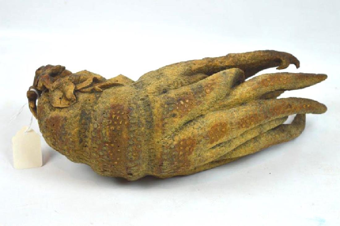 Large Chinese Carved Bamboo Buddha's Hand Citron - 5
