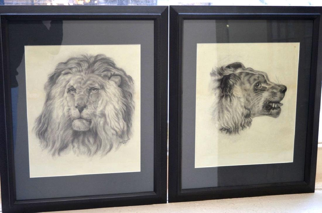 Ethel Gomm 1895: 2 mixed media Drawings of Lions