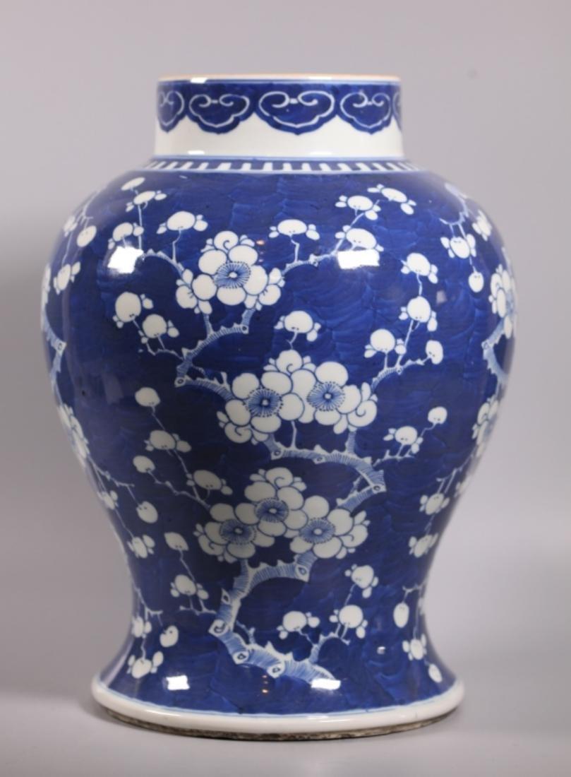 Chinese Qing Dynasty Blue & White Porcelain Jar