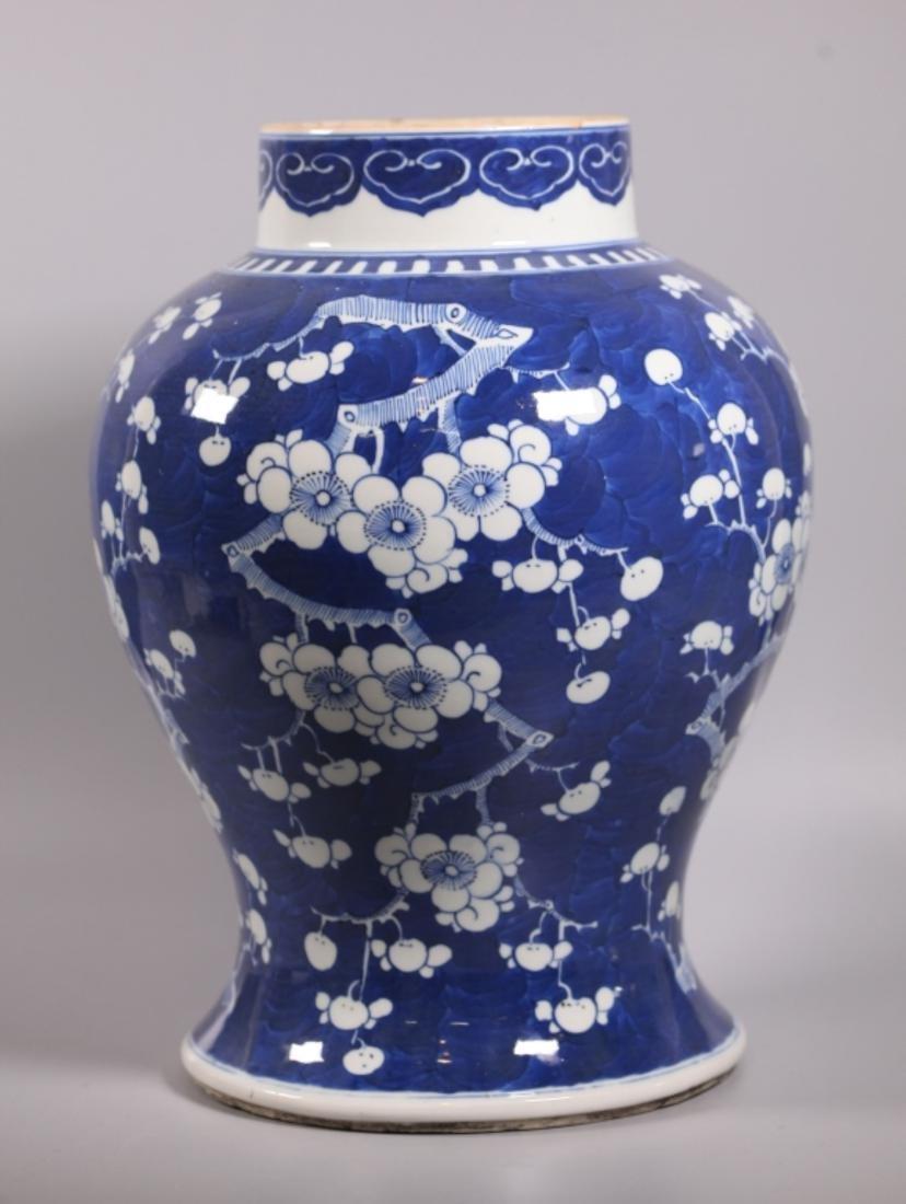 Chinese Qing Dynasty Blue & White Porcelain Jar - 2