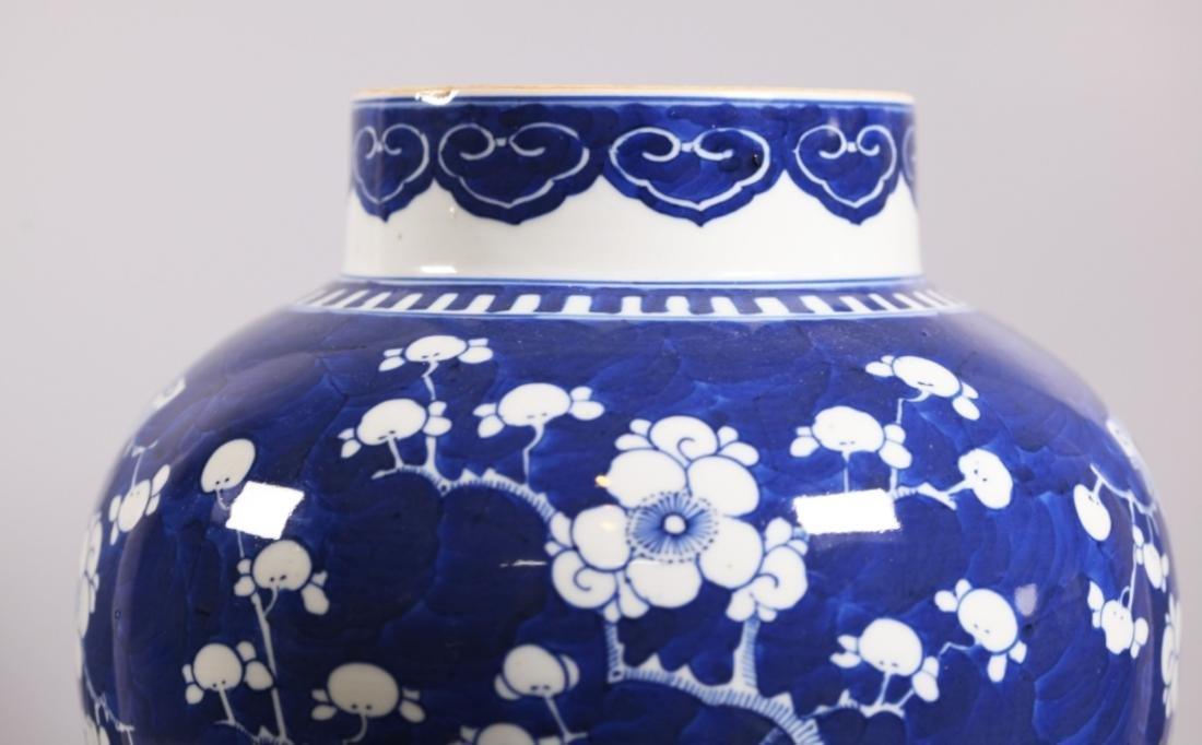 Chinese Qing Dynasty Blue & White Porcelain Jar - 6