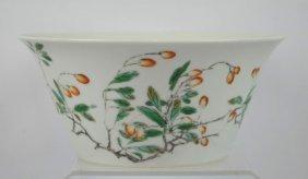 Chinese Porcelain Famille Verte Butterfly Bowl