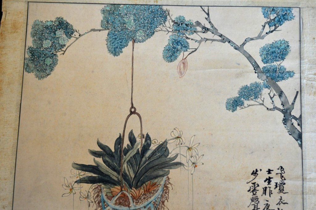 3- Chinese Color & Ink Paintings of Flowers & Bugs - 3