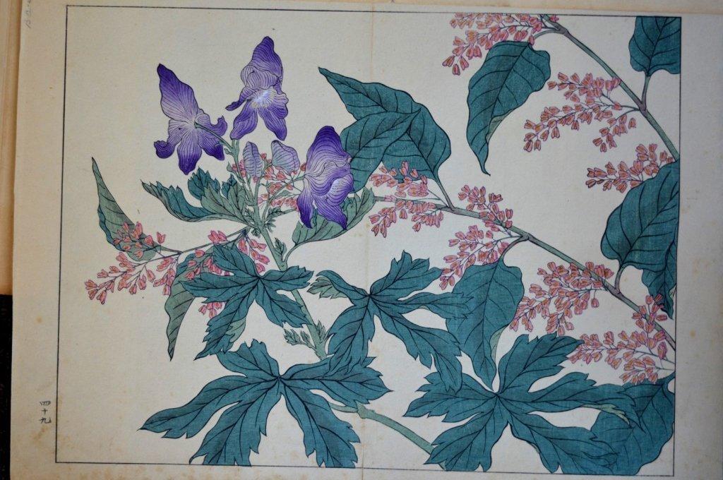 8 - Antique Japanese Woodblock Prints - 7