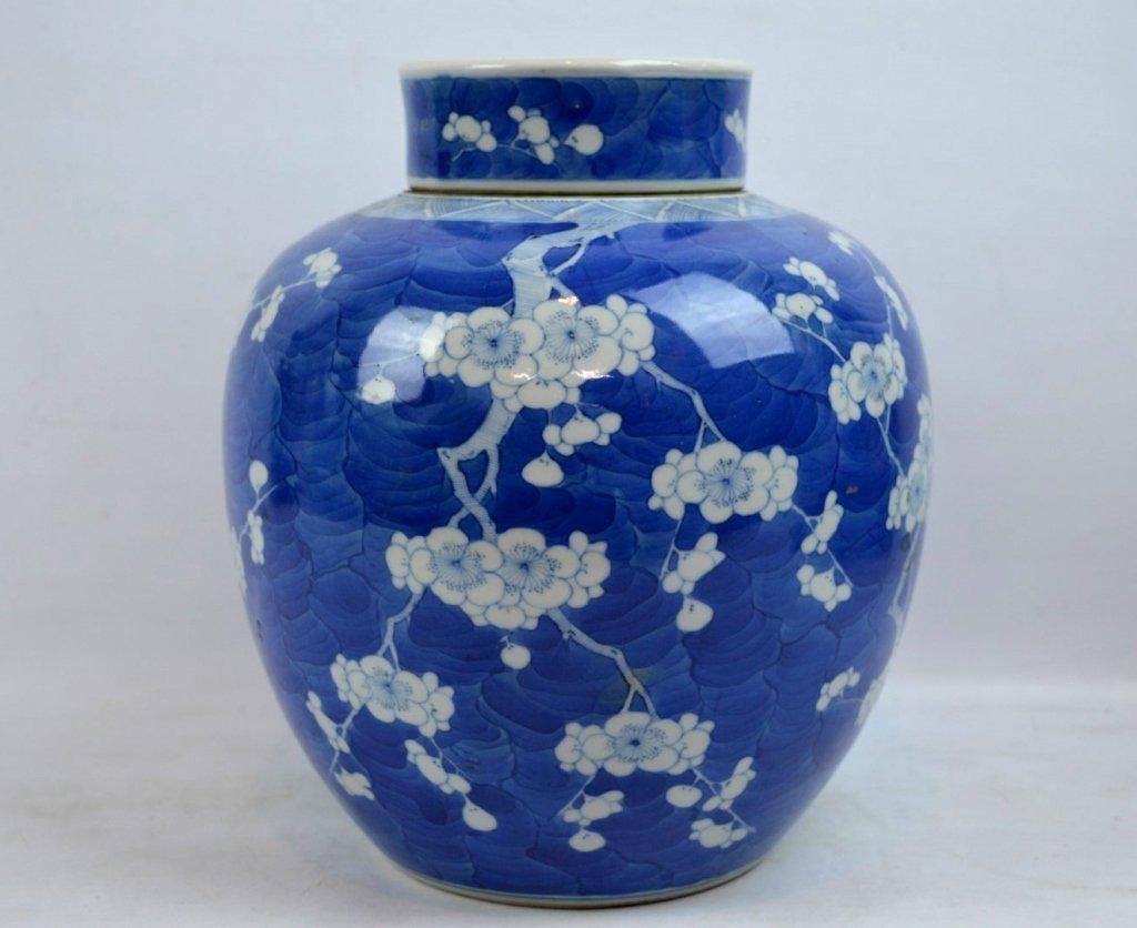 Good Late Qing Chinese Blue & White Hawthorn Jar