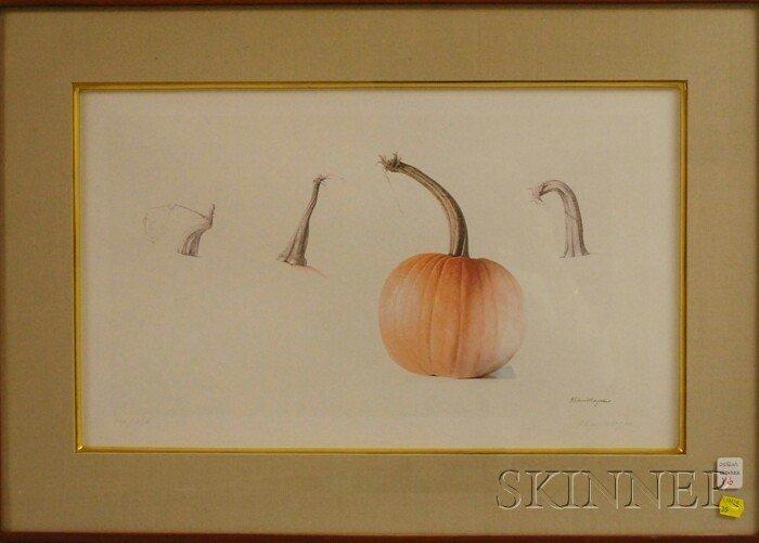 16: Alan Magee (American, b. 1947) Pumpkin Stems. Signe