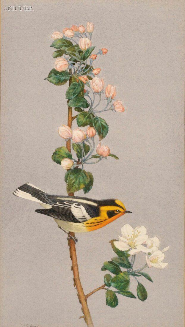 Charles Emile Heil (American, 1870-1950) Blackburn