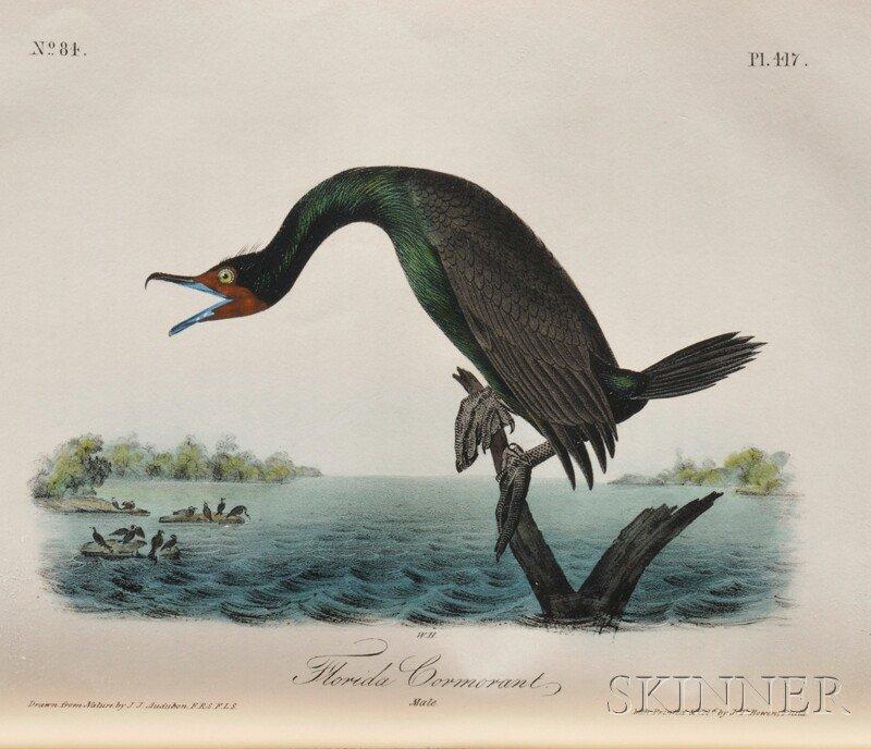 627: Audubon, John James (1785-1851) Birds of America 1