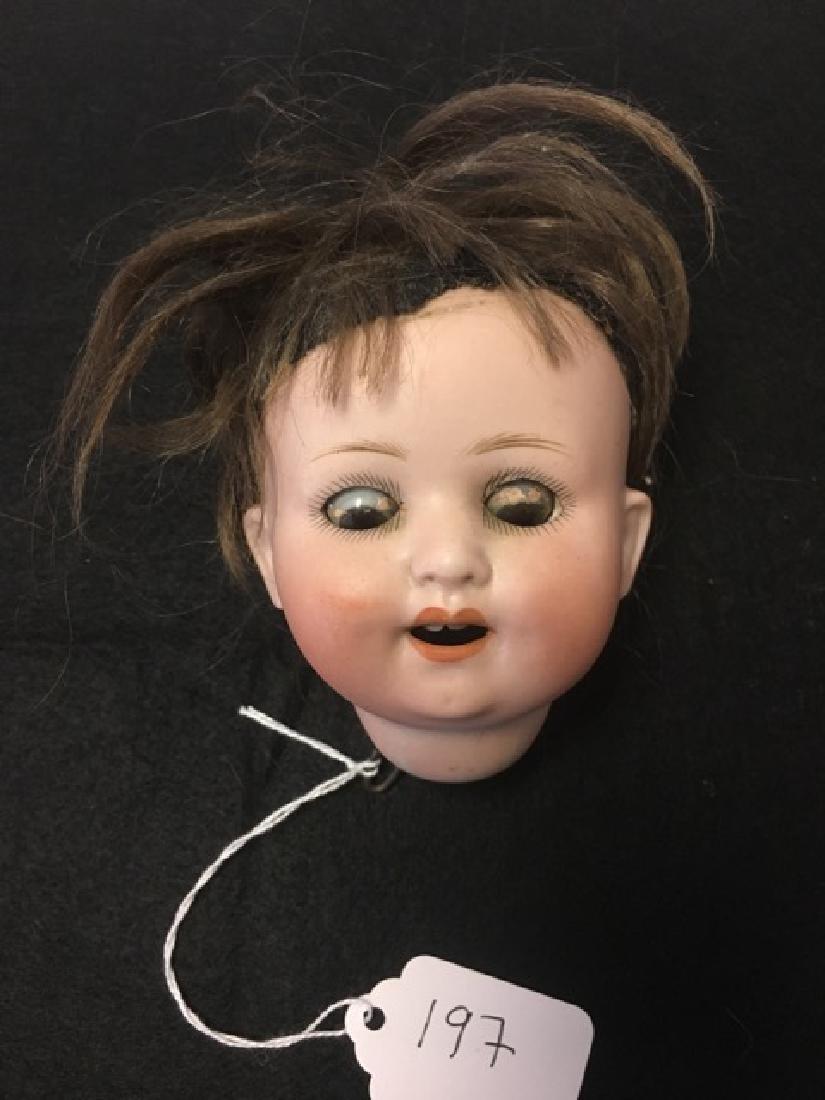 German Porcelain Doll Head