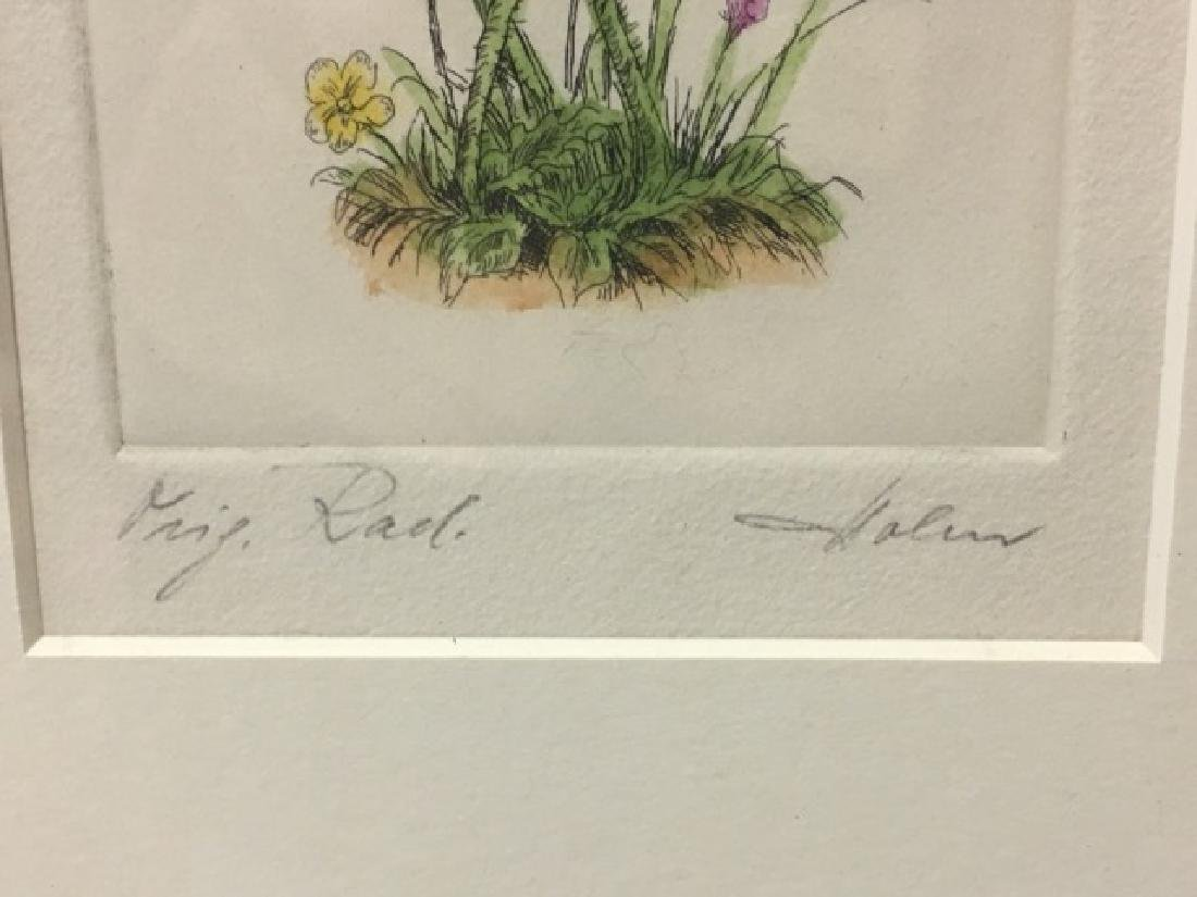 Watercolor - Poppies Signed Indiscernably - 3