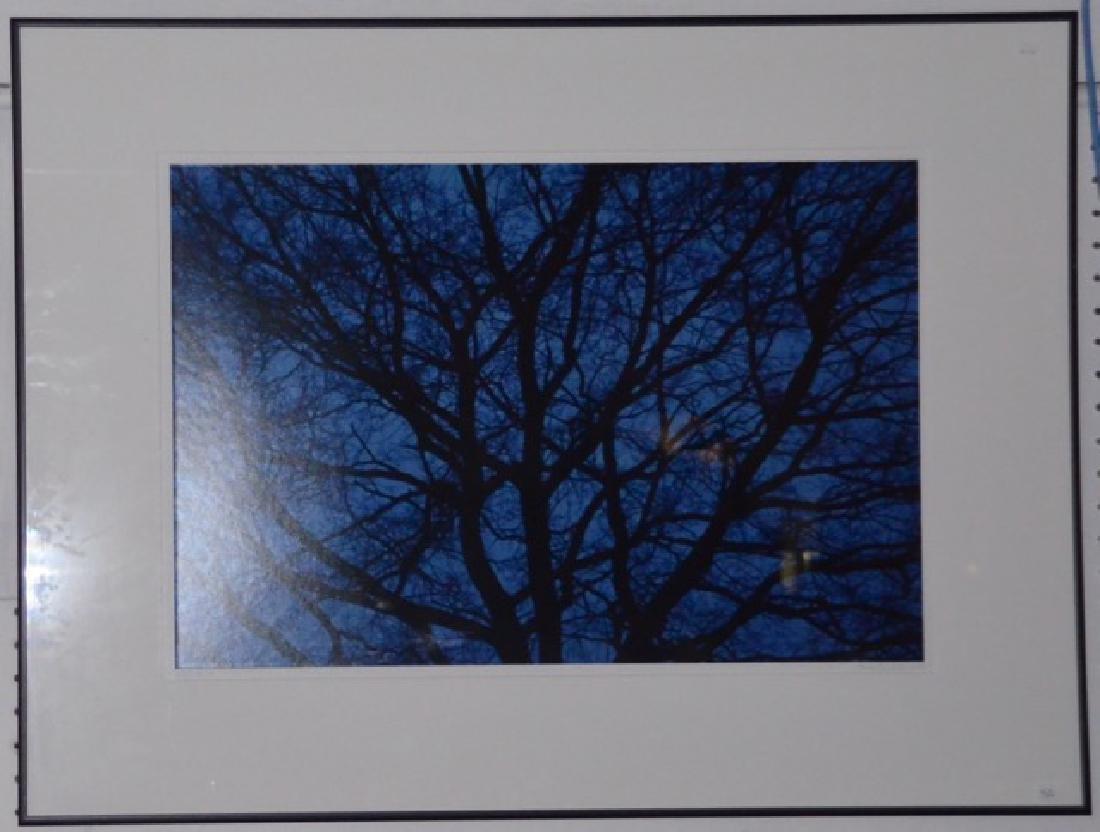 "Photograph, ""Blue"" Sgd.  San Pietro, G."