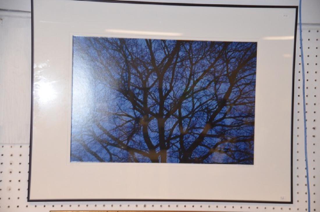 "Photograph, ""Blue"" Sgd.  San Pietro, G. - 2"