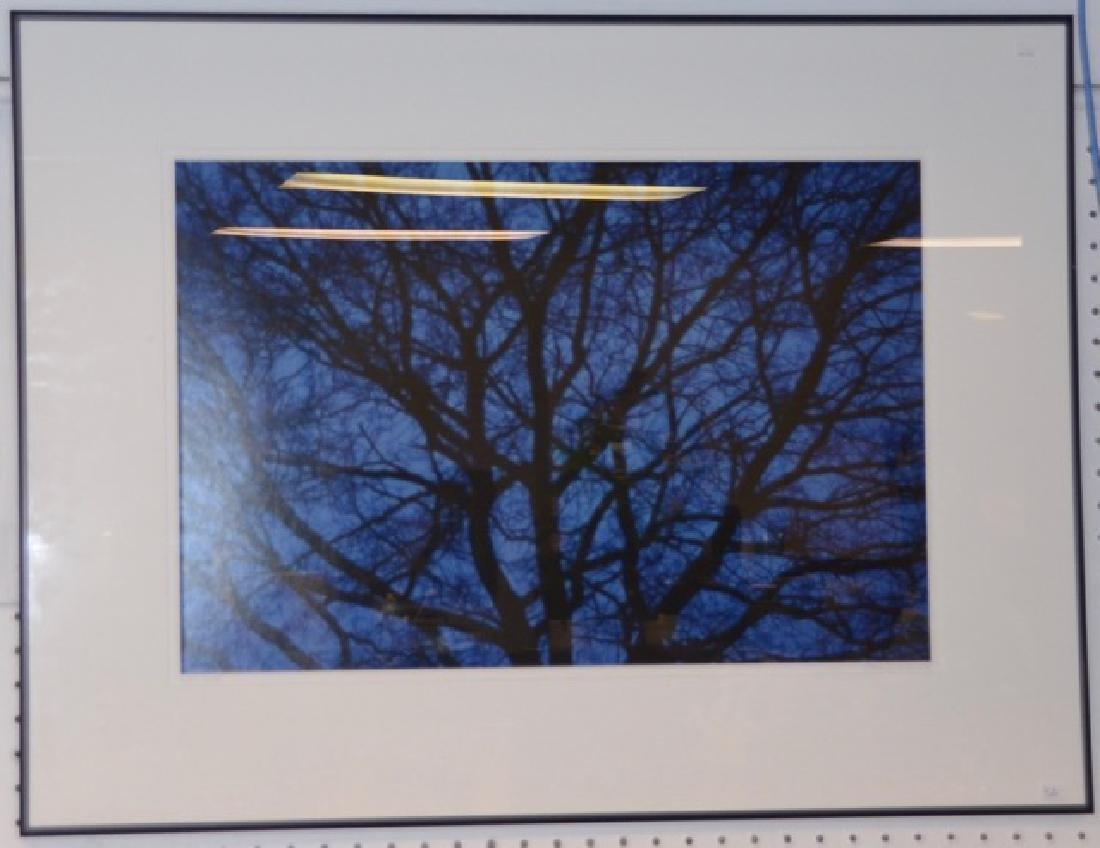 "Photograph, ""Blue"" Sgd.  San Pietro, G. - 3"