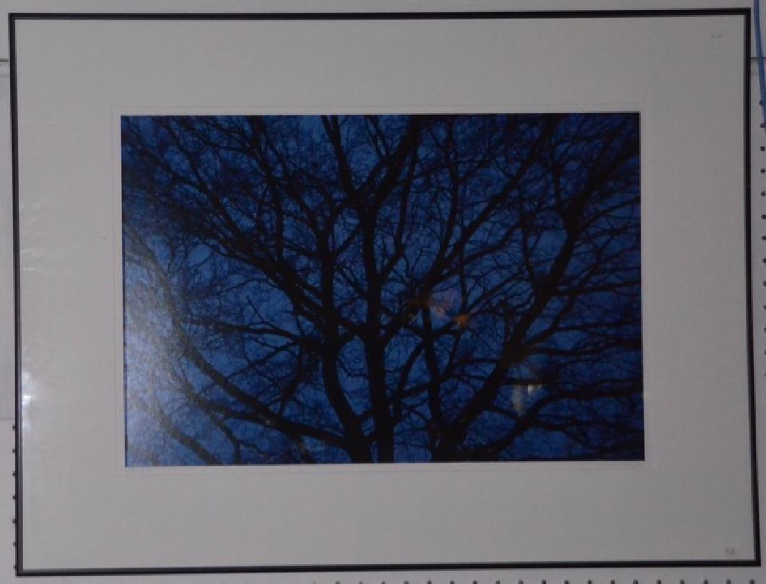"Photograph, ""Blue"" Sgd.  San Pietro, G. - 4"