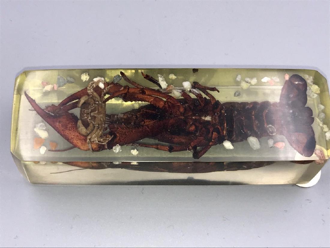 Lucite Crawfish Paperweight - 3