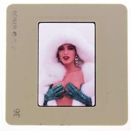 Original 35mm Janice Martin 1987 By Bob Guccione