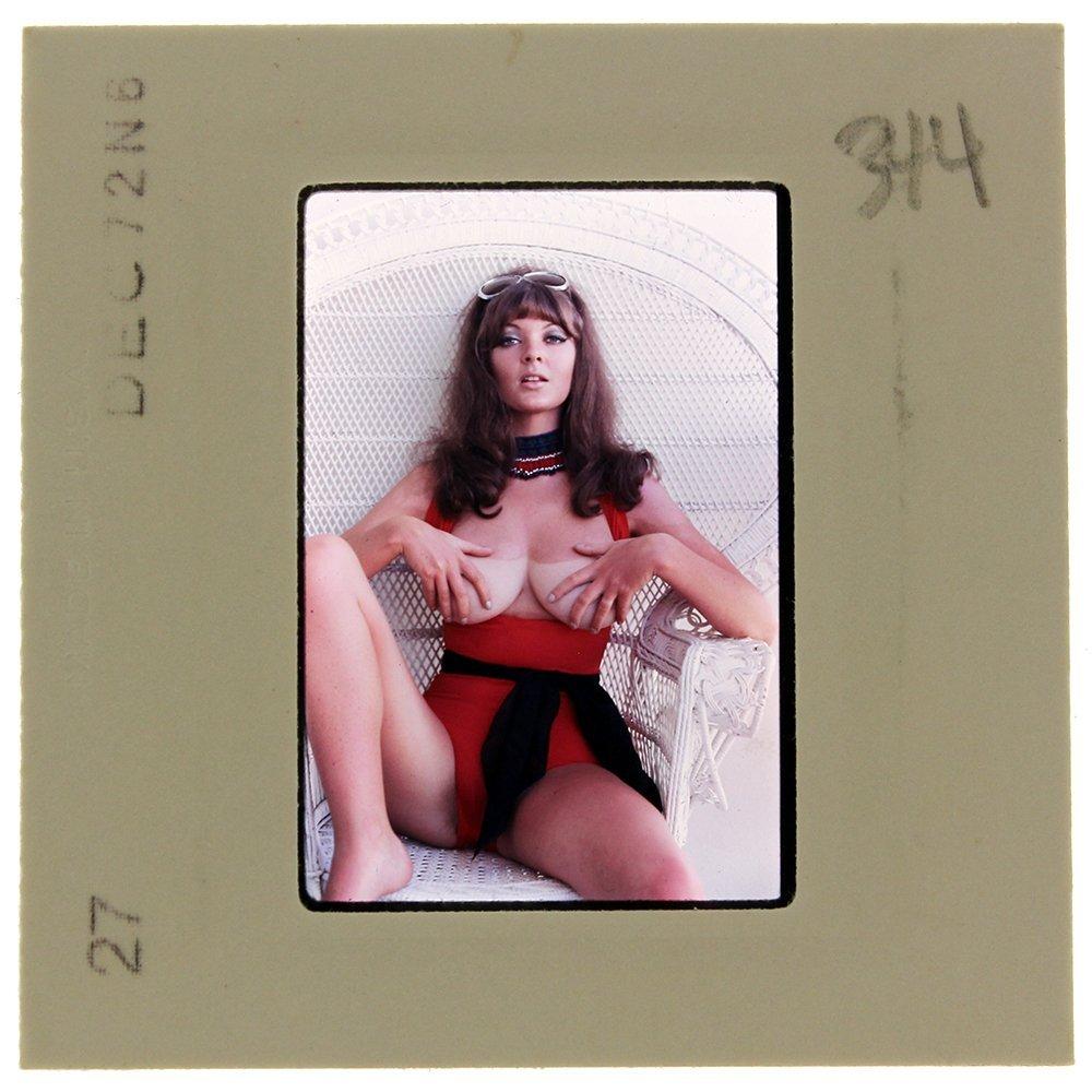 Avril Lund 1972 35mm By Bob Guccione
