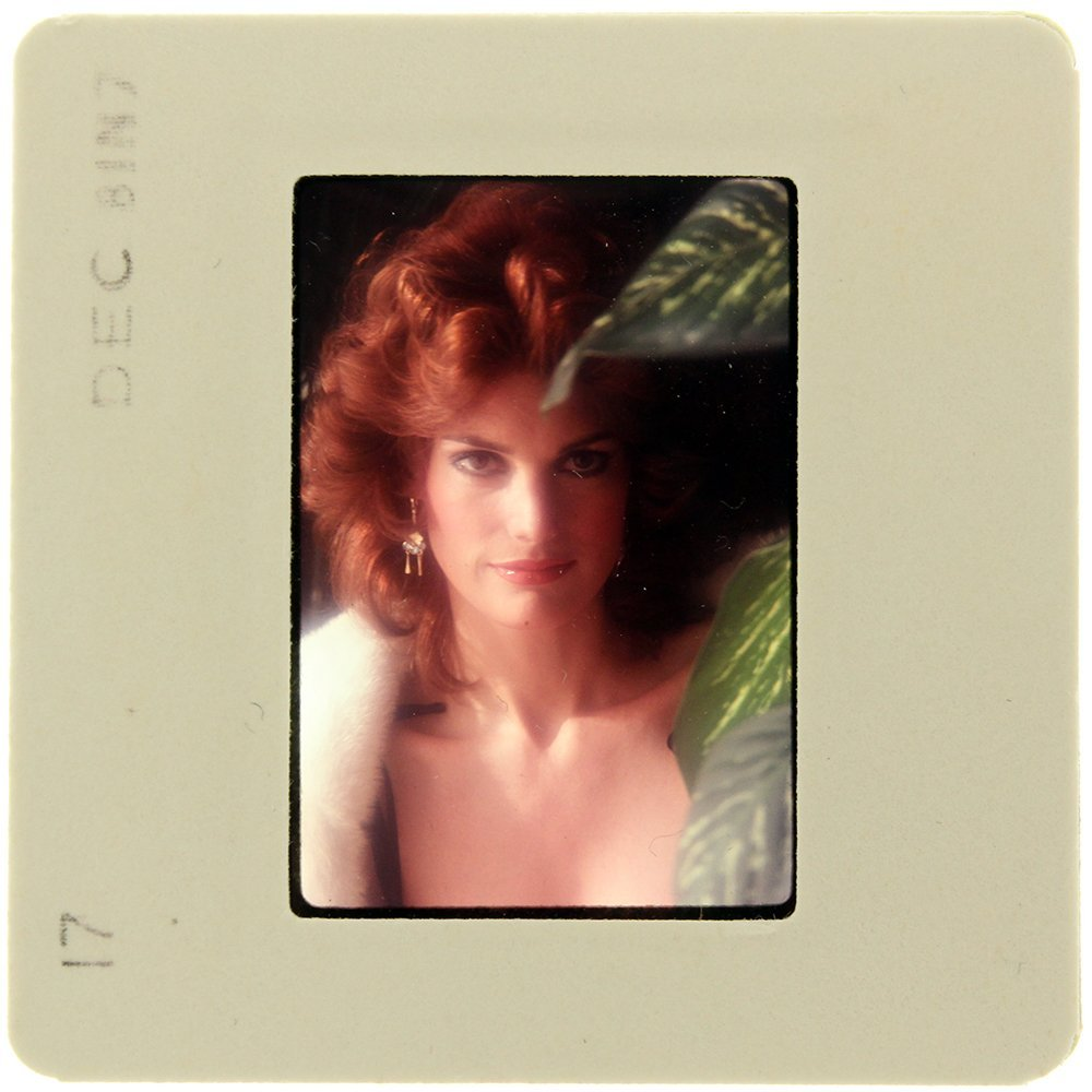 Donna Barnes nude 630
