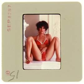 Ava Monet 1982 35mm By Bob Guccione