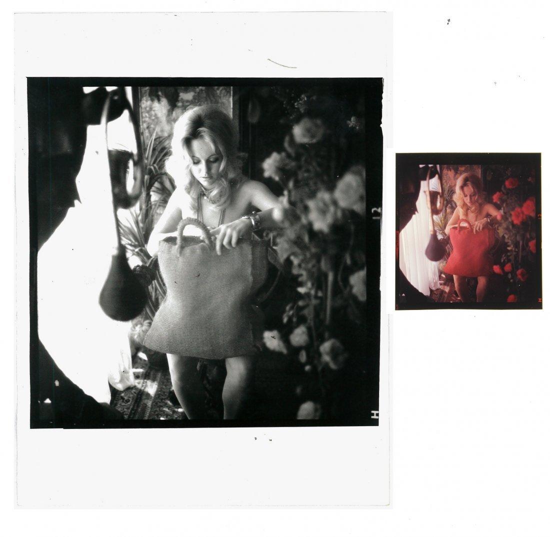 Angela Adams 120mm & 6x8 B&W Print By Bob Guccione