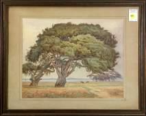 Watercolor Henry Otto Wix Koa Trees Hawaii