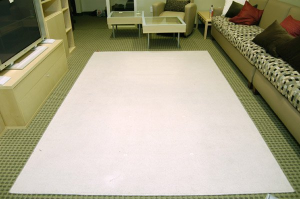 Ikea Cream Rug Home Decors Collection